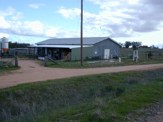 side view of the wool shed